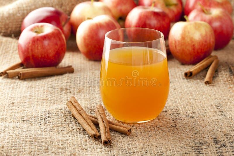 Sidra de Apple orgánica fresca imagen de archivo libre de regalías
