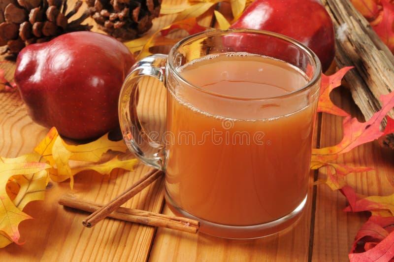 Sidra de manzana caliente imagen de archivo