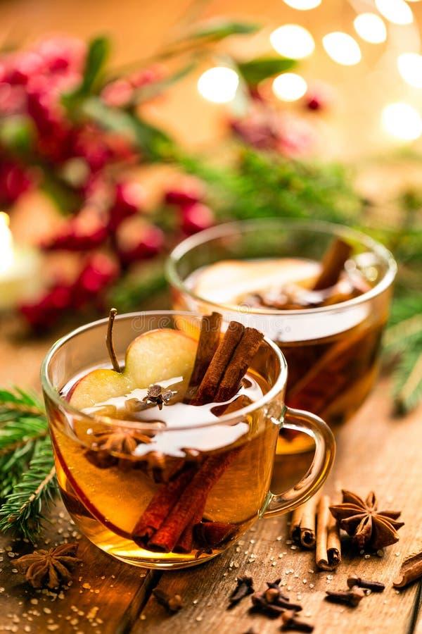 Sidro sciupato con cannella, i chiodi di garofano e l'anice Bevanda tradizionale di Natale fotografia stock libera da diritti