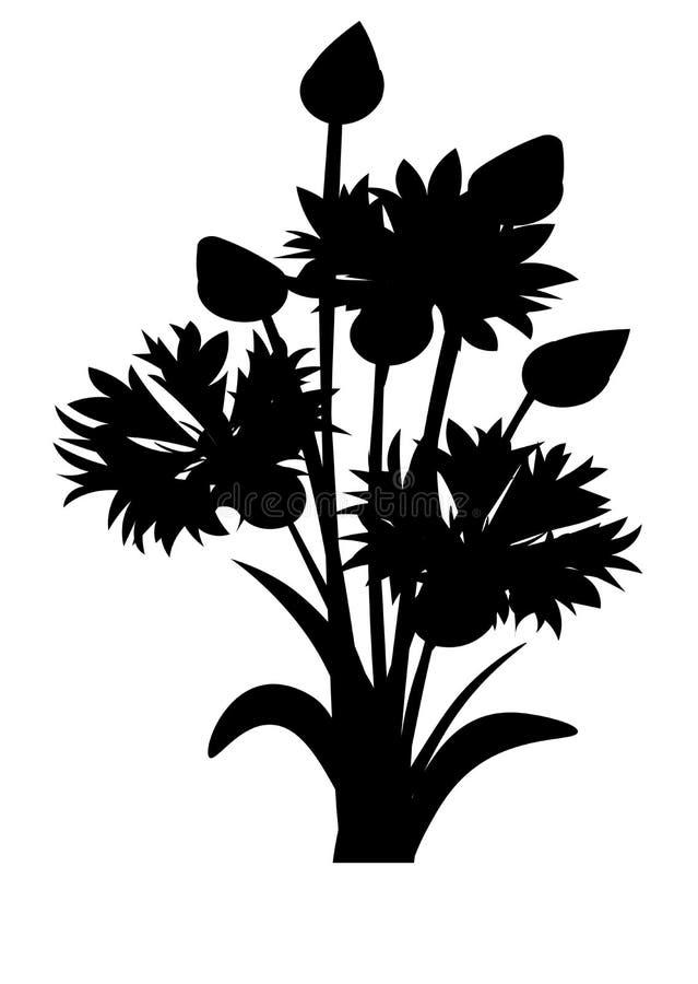 Sieć Cornflowers nakreślenie Nieociosany bukieta projekt Medyczni ziele ustawiający również zwrócić corel ilustracji wektora ilustracja wektor
