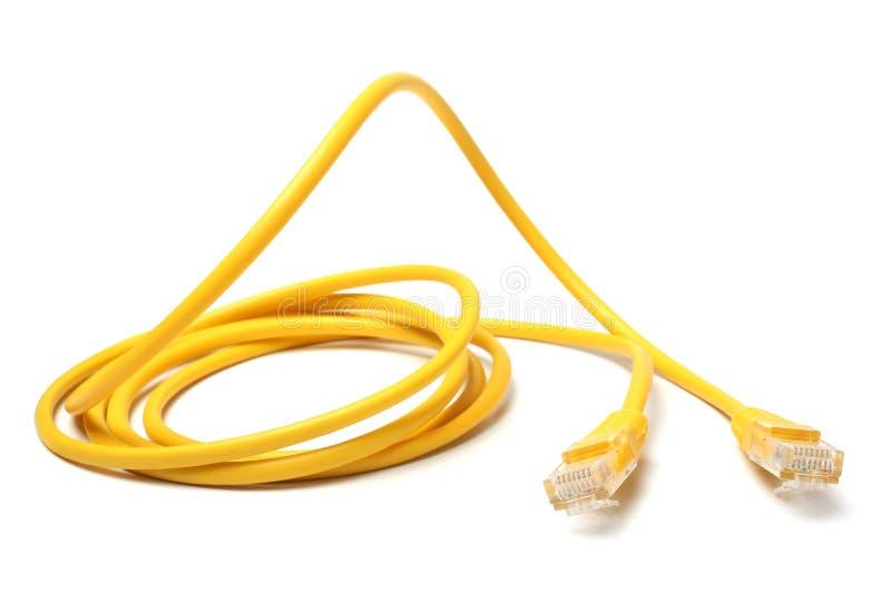 Sieć ethernetów kabel z RJ45 włącznikami zdjęcia royalty free