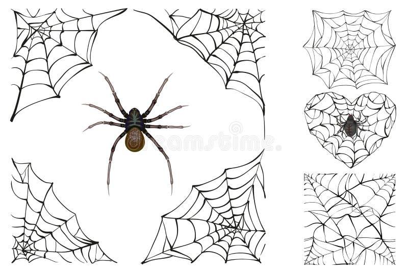 Sieć i jadowity pająk Ustawia Halloweenowego akcesorium ilustracji