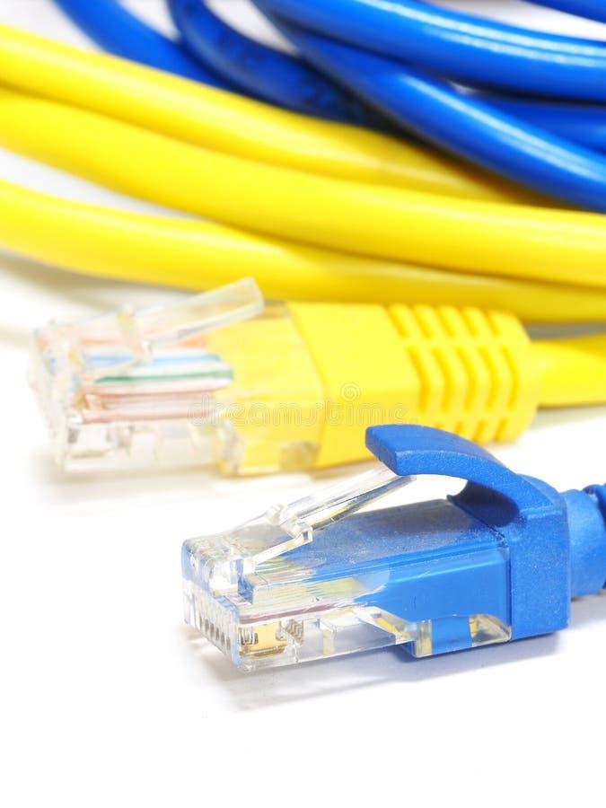 Sieć interneta kabel odizolowywający na białym tle obraz royalty free