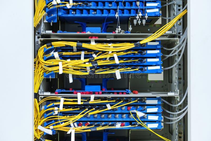 Sieć kabel obrazy royalty free