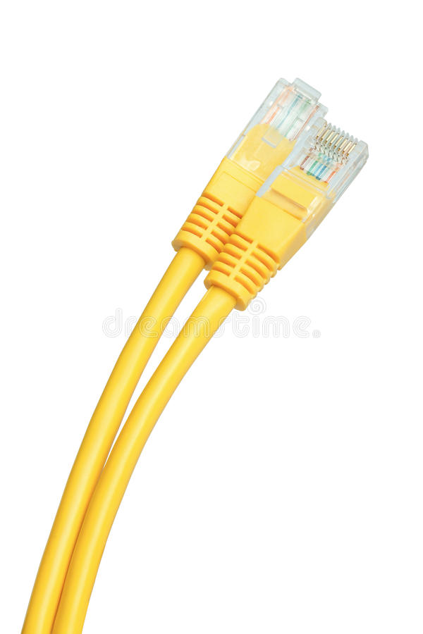 Sieć kabel obrazy stock