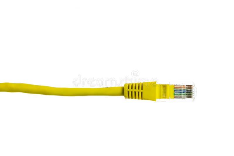 Sieć kabel z RJ45 odizolowywa fotografia royalty free