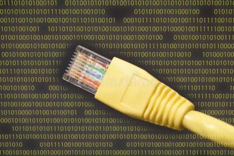 Sieć komputerowa kabel (RJ45) obrazy stock