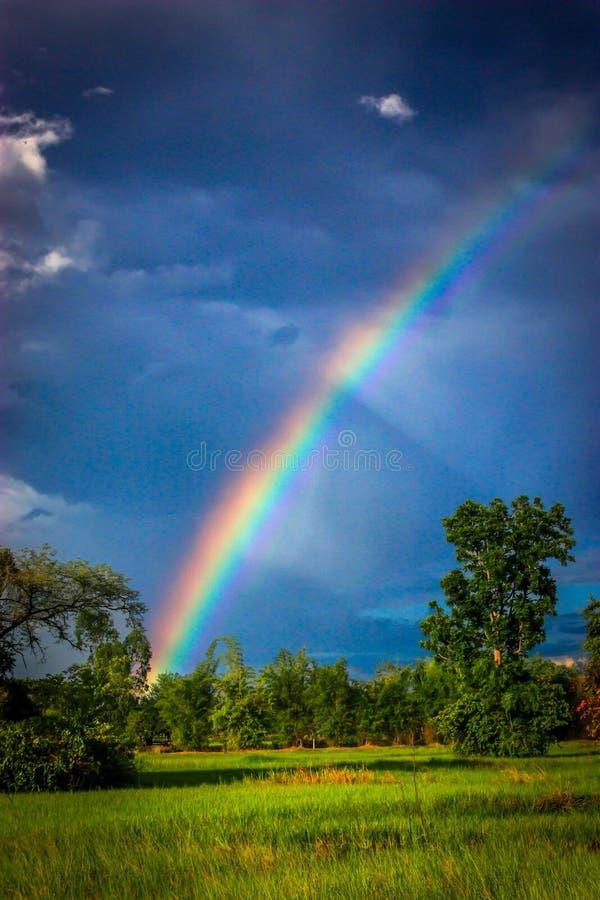 Sieben Farben des Regenbogens lizenzfreie stockbilder