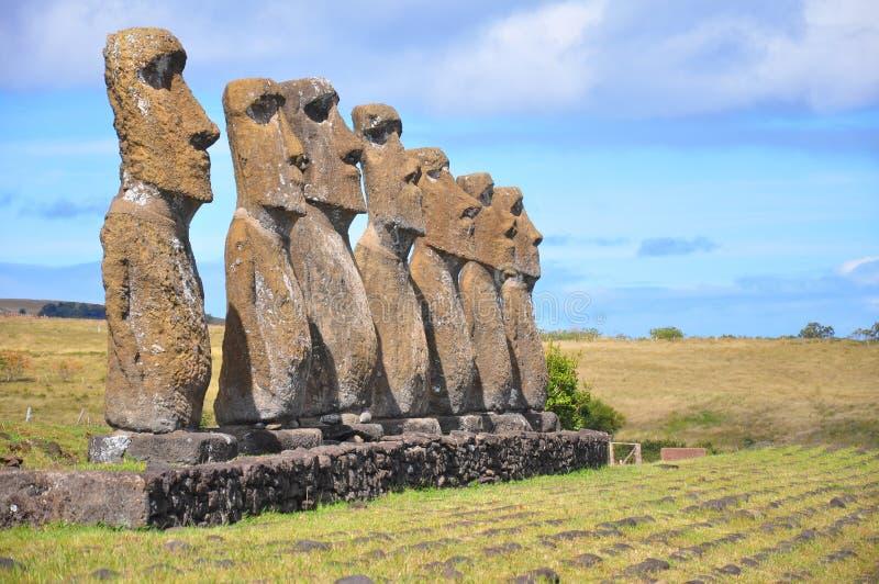 Sieben Moai, Ostern-Insel stockfotografie
