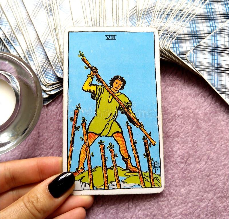 Siedem VII różdżki Tarot karta ilustracja wektor