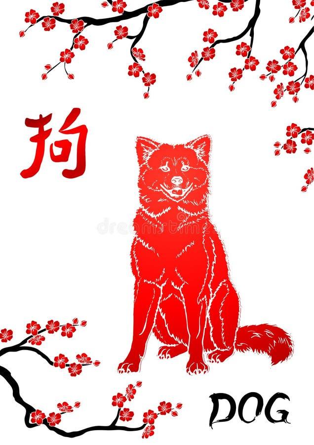 Siedzący pies i orientalna wiśnia rozgałęziamy się na whit royalty ilustracja