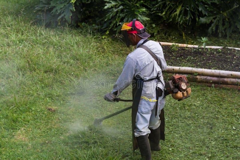 Siega en Costa Rica fotos de archivo libres de regalías