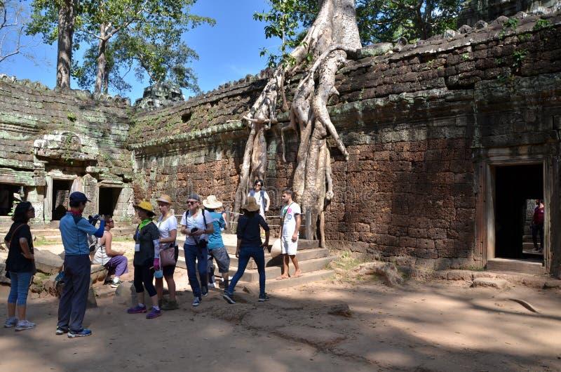 Siem oogst, Kambodja - December 3, 2015: De toeristen bezoeken de tempel van Ta Prohm in Angkor, oogst Siem stock afbeeldingen
