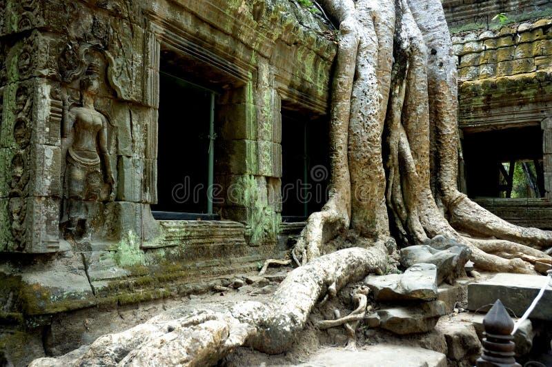 Siem oogst tempel royalty-vrije stock fotografie