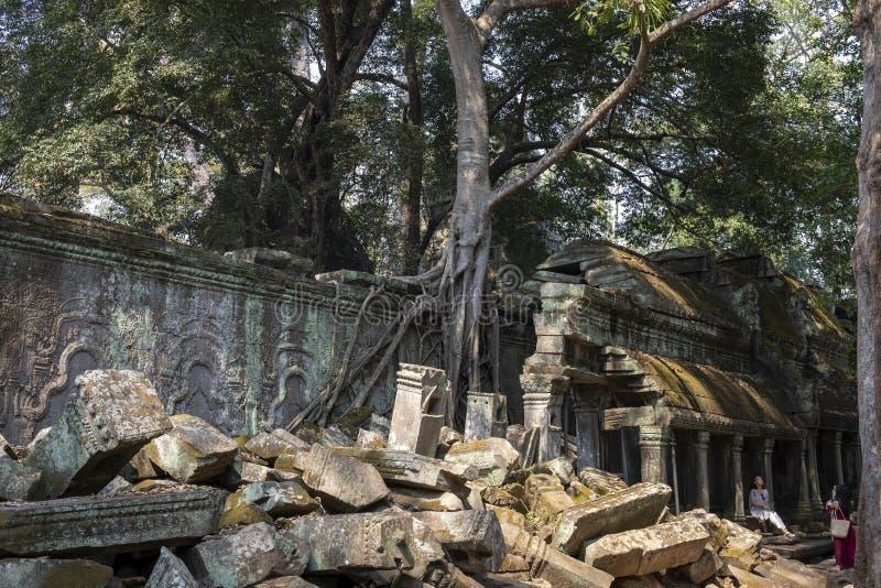Siem Przeprowadza żniwa, Kambodża - 26 Marzec 2018: Azjatycki turysta w antycznej świątyni Turysta robi fotografiom w Ta Prohm św obraz stock