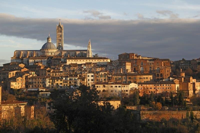Download Siena stock image. Image of historic, night, city, scene - 28471411