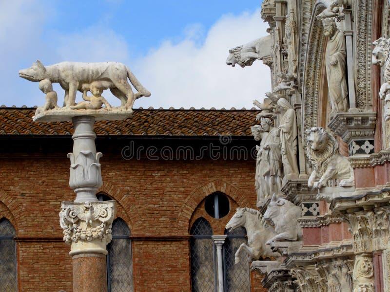 Siena lizenzfreie stockfotografie