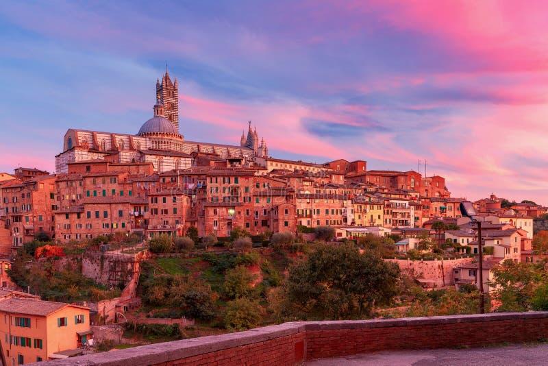 Siena Kathedrale am Sonnenuntergang lizenzfreie stockbilder
