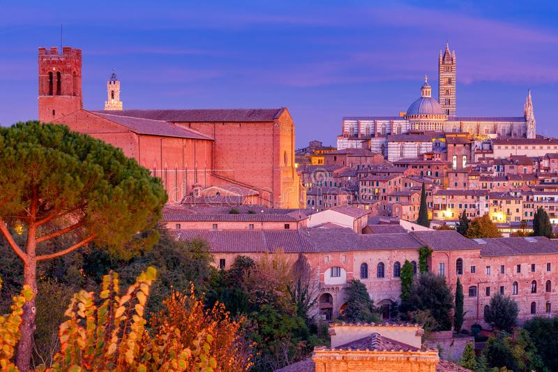 Siena Kathedrale am Sonnenuntergang stockbild
