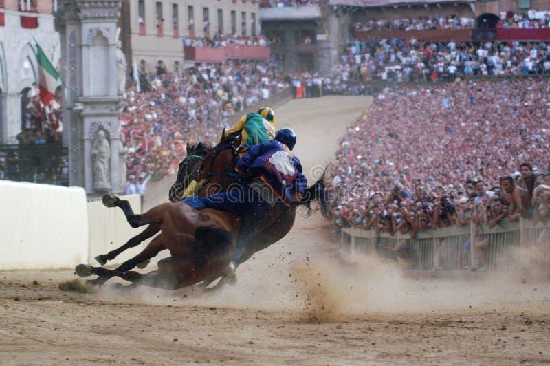 Siena paliopaardenkoers royalty-vrije stock foto