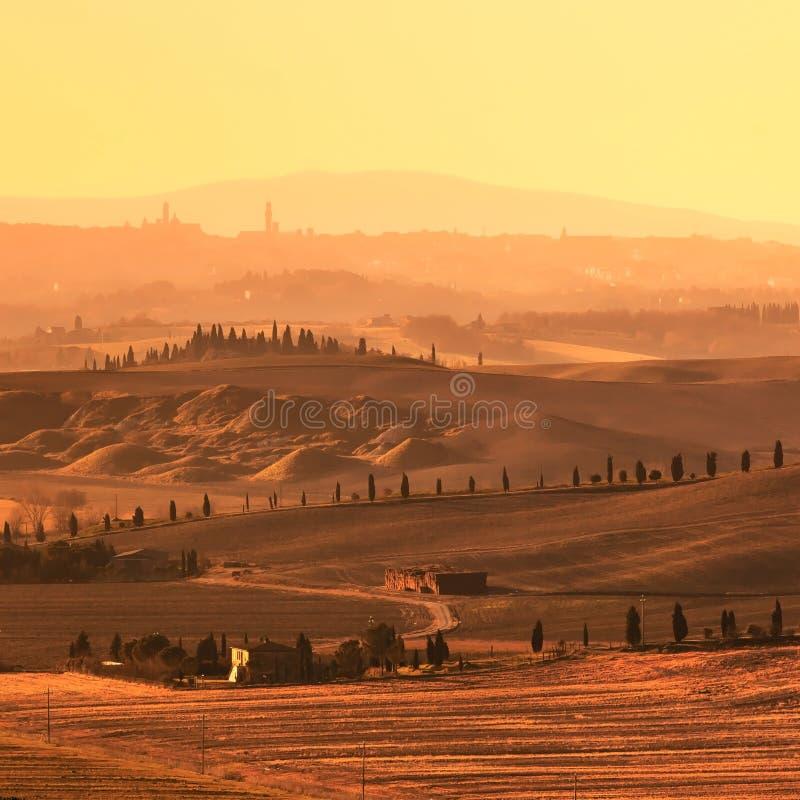 Siena, Rolling Hills en puesta del sol. Paisaje rural con los árboles de ciprés. Toscana, Italia fotos de archivo libres de regalías