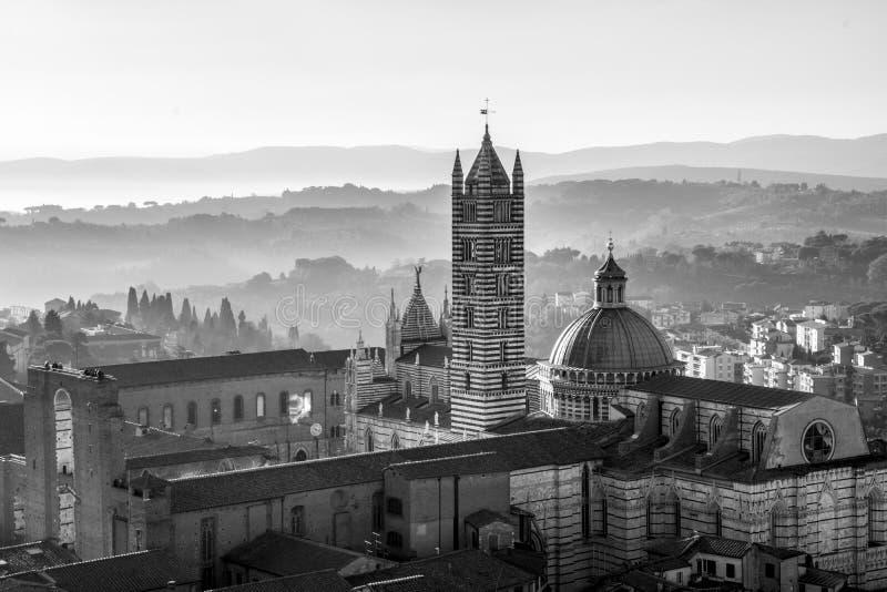 Siena ` s Piazza del Duomo fotografering för bildbyråer