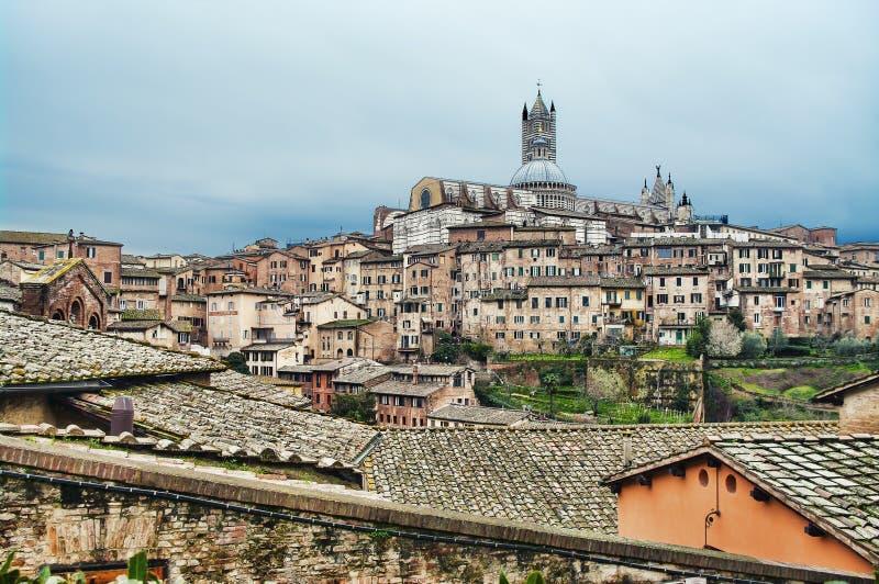 siena tuscany arkivfoton