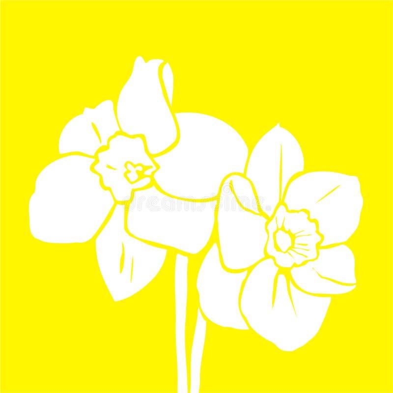 Sier gele narcis royalty-vrije illustratie