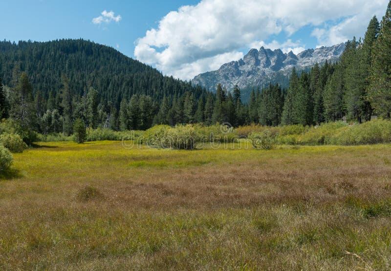 Sierra Buttes från en öppen skugga royaltyfria bilder