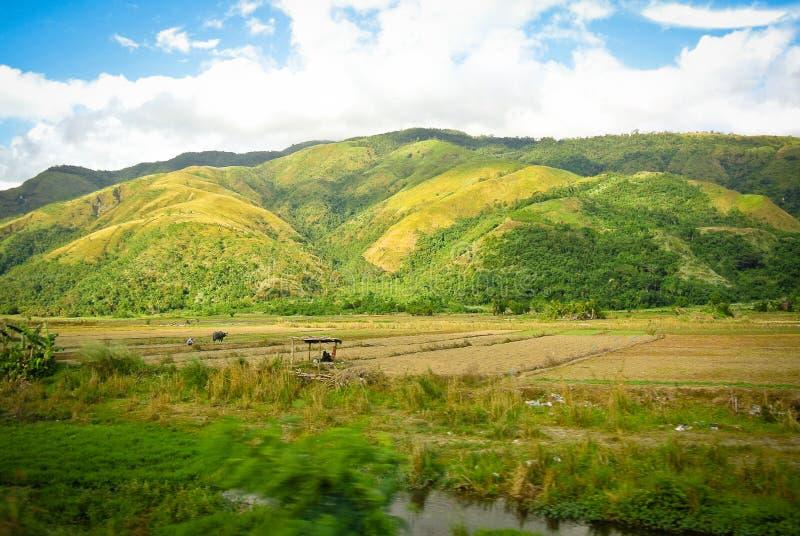 Sierra chaîne de montagne de Madre images libres de droits