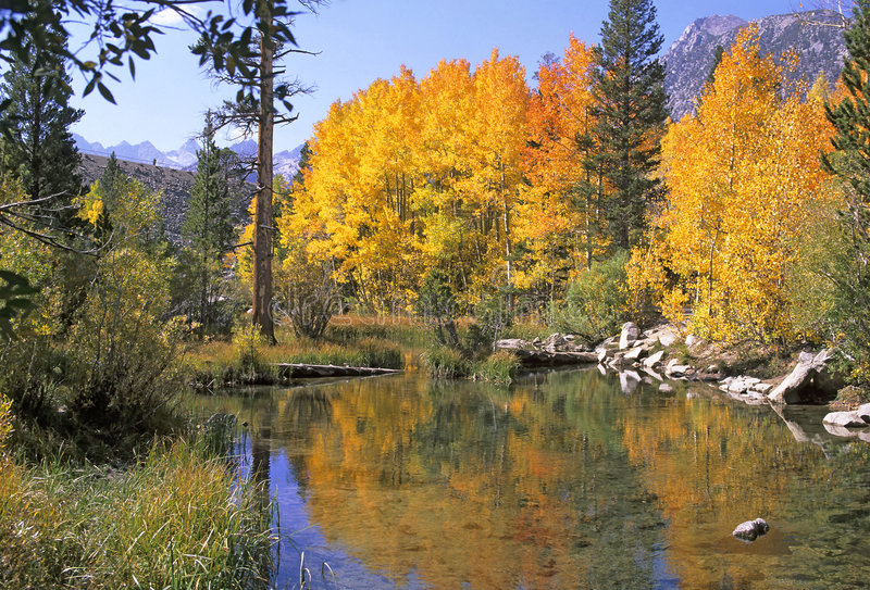 Sierra Colors royalty free stock image
