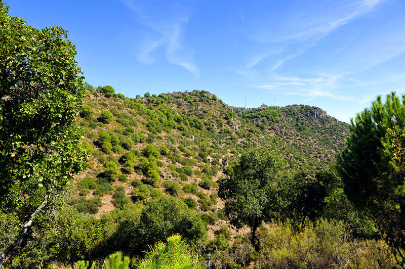 Sierra de Andujar Natural Park, Jaen province, Spain. The Natural Park of Sierra de Andujar is a protected natural area of mediterranean mount located in the royalty free stock photography