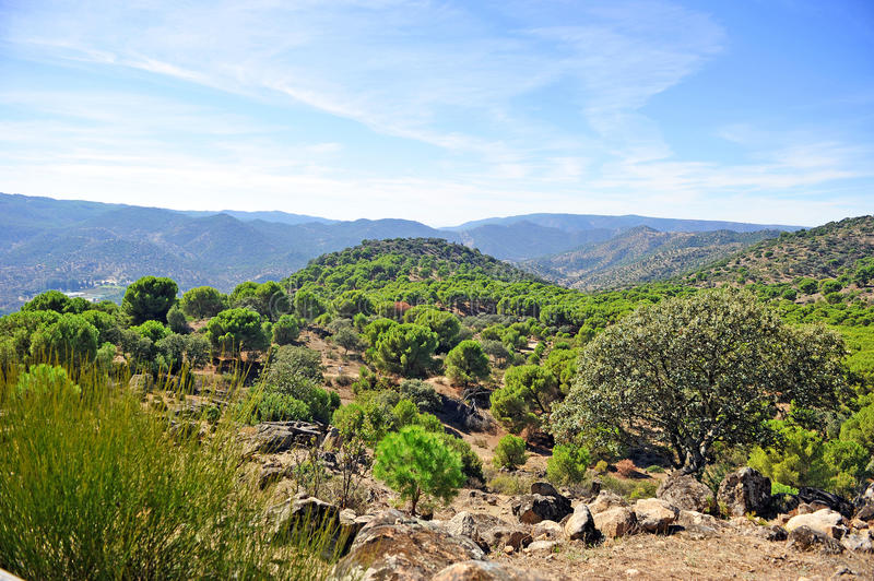 Sierra de Andujar Natural Park, Jaen province, Spain. The Natural Park of Sierra de Andujar is a protected natural area of mediterranean mount located in the stock photos