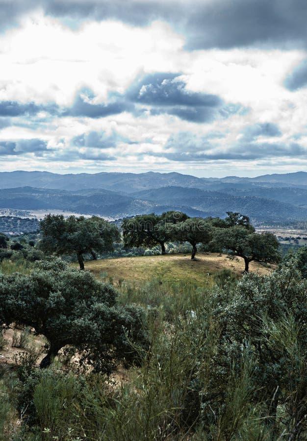 Download Sierra la Jayona outskirts stock photo. Image of badajoz - 24292106