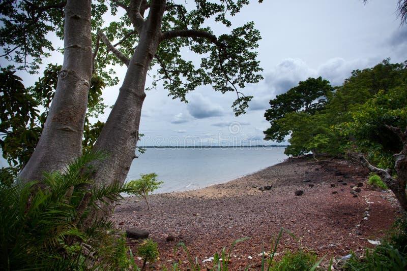 Sierra Leone, Africa occidentale, le spiagge dell'isola di Bunce immagine stock libera da diritti