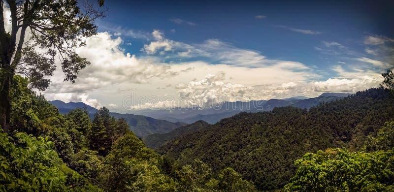 Sierra Madre del Sur dichtbij San Jose del Pacifico, Oaxaca royalty-vrije stock afbeelding