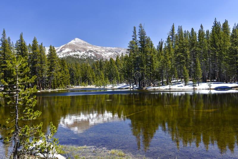 Sierra Nevada fotografering för bildbyråer