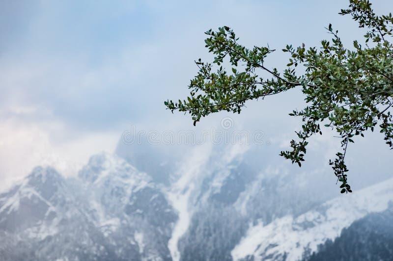 Sierra Nevada Berge im Winter stockbild