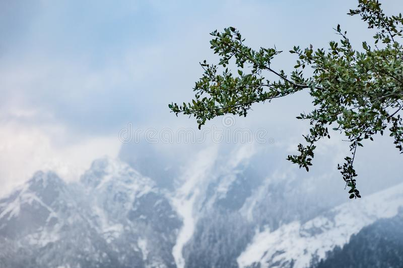 Sierra Nevada mountains in winter stock image