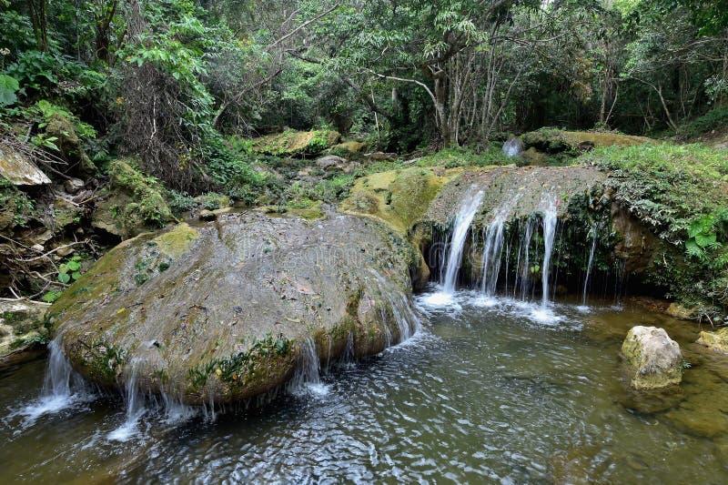 Sierra Rosario Biosphere Reserve, Pinar del Rio. SOROA WATERFALL, Sierra Rosario Biosphere Reserve, Pinar del Rio, Cuba stock photos