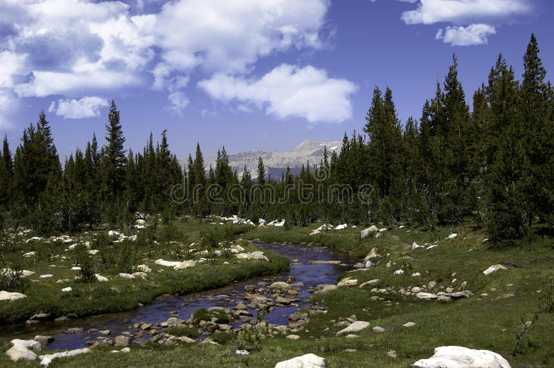 A Sierra Stream royalty free stock image