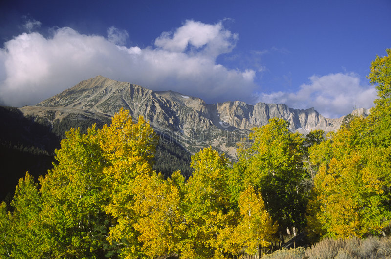 Sierra variopinta tremule di Nevada immagini stock libere da diritti