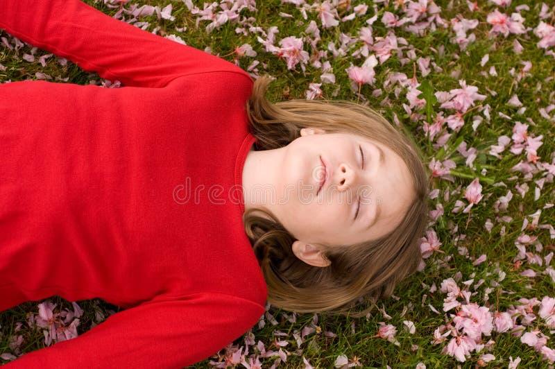 Siesta del flor de Apple foto de archivo