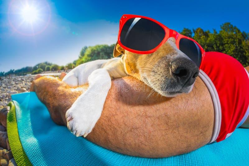 Siesta del proprietario e del cane alla spiaggia immagini stock