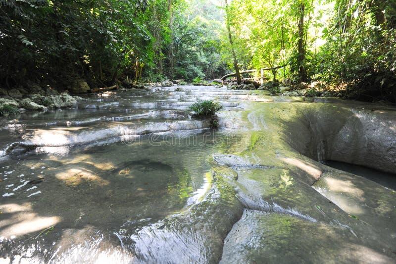 siete altares瀑布在森林的利文斯通的 免版税库存图片