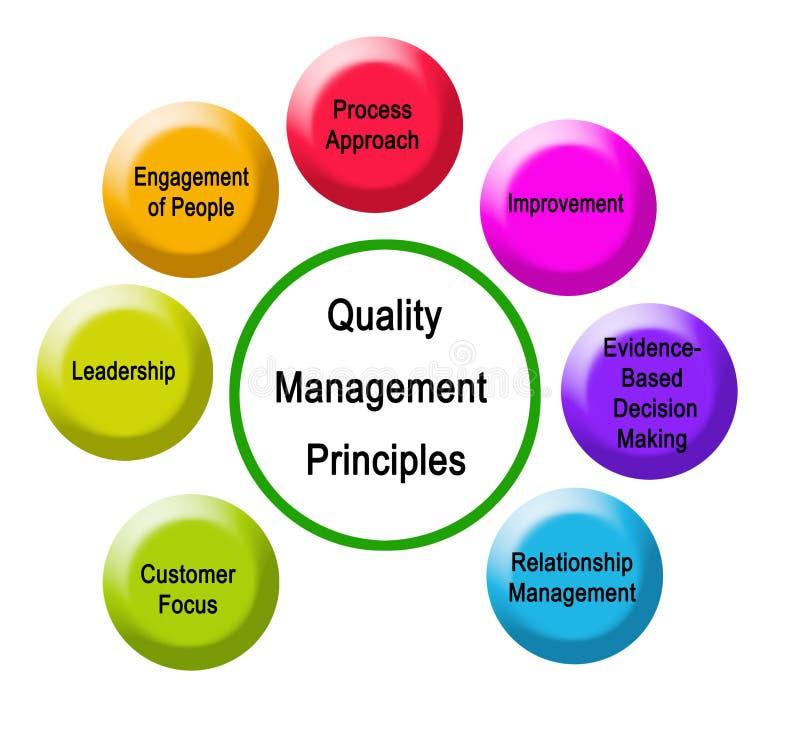 Siete principios de gestión de calidad ilustración del vector