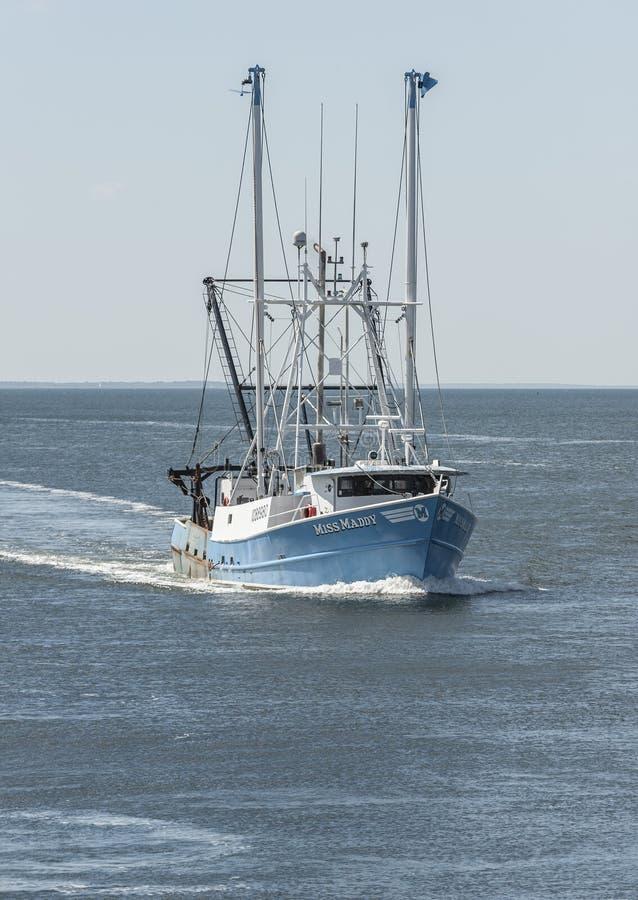 Sig.na Maddy Buzzards Bay di Scalloper fotografie stock libere da diritti