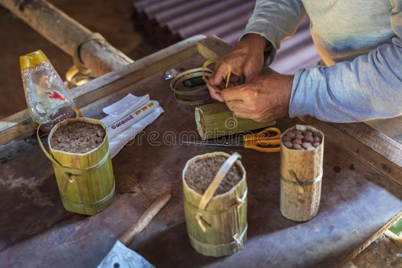 Sigarenvoorbereiding, Vinales, Unesco, Pinar del Rio Province, Cuba, de Antillen, de Caraïben, Midden-Amerika stock afbeelding