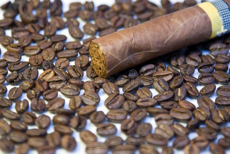 Sigaro cubano sui chicchi di caffè fotografie stock libere da diritti