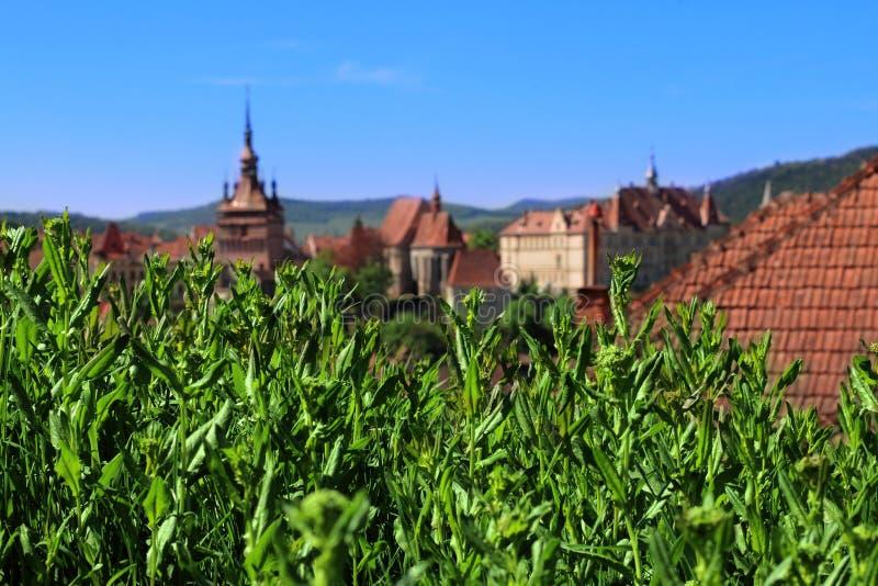 Sighisoara城堡地平线 库存图片